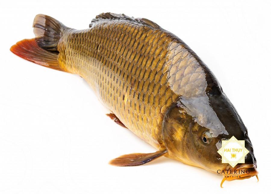 Cá chép nên kết hợp với các loại thực phẩm nào?